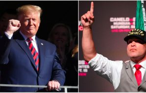 President Donald Trump © John David Mercer USA Today Sports / Tito Ortiz © Joe Camporeale-USA TODAY Sports